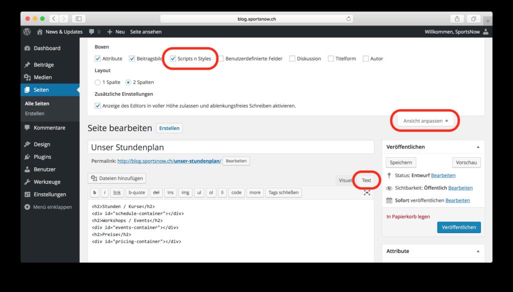sportsnow-website-integration-neue-seite